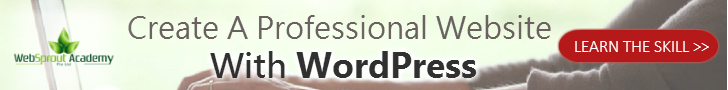 create a professional website with wordpress